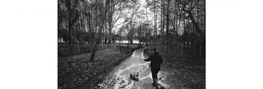 Wollaton in Monochrome – February 2017