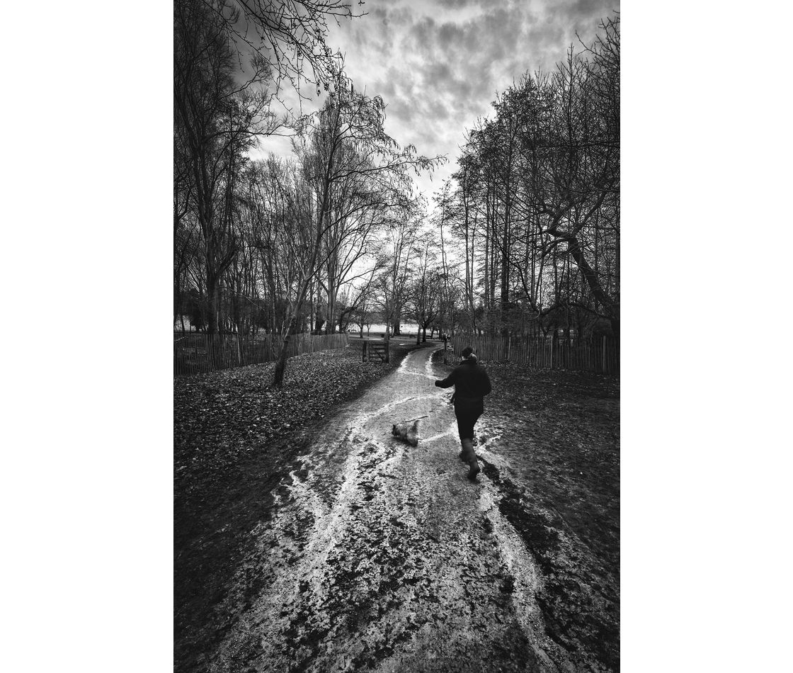 Wollaton in Monochrome – February 2017
